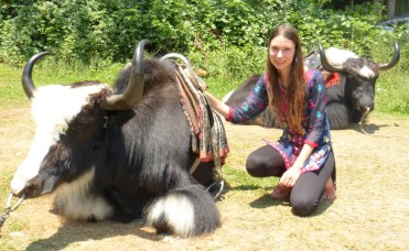 Jess and the yaks